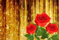 Red rose with green leaves on the gold abstract background