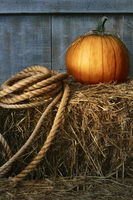 Large pumpkin with rope on hay in the barn