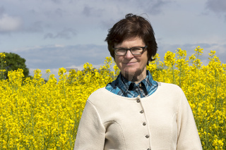 Agricultural engineer before the rape field
