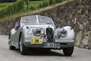 south tyrol classic cars_2014_Jaguar XK 120 Roadster_3