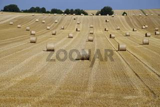 Rundballen auf einem Getreidefeld