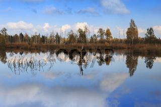 Spiegelung im herbstlichen Moor