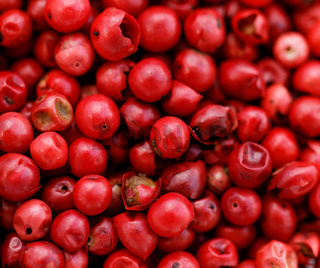 A background of pink peppercorns - macro photo