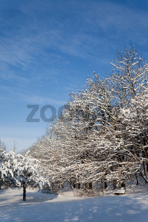 Winterlandschaft bei der Lobdeburg