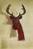 Mounted deer head with garland and holiday sign