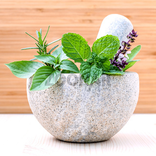 Alternative health care fresh herbs basil ,sage ,rosemary and mint in the mortar on wooden background.