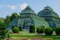 Palmenhaus im Wiener Schlosspark Schönbrunn