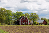 Red wooden farmhouse in Sweden.