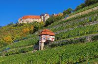 Freyburg Burg - Freyburg castle 03