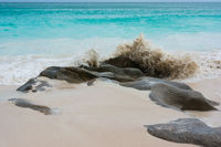 Dream beach on the Seychelles