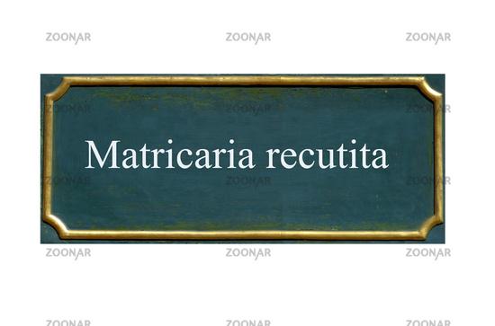shield matricaria recutita
