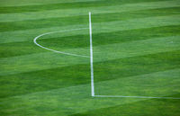 Close-up of striped pattern on grassy soccer field