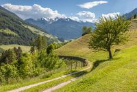 Hiking path in South Tyrol