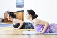 yoga at home cobra pose