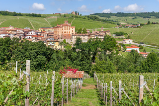Small town of barolo and vineyards in Italy.