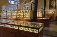 verschiedene Mineralien in historischne Vitrinen, Naturkundemuse
