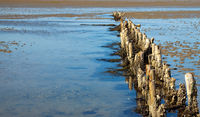 wooden breakwater