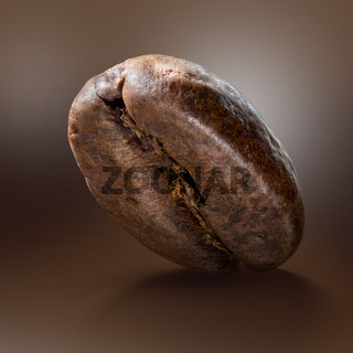 Coffee bean on brown background