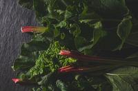 Fresh rhubarb on dark stone with beautiful light, flat lay