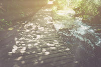 Hiking Trail with Sunlight with Vintage Instagram Film Effect