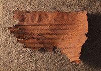 Piece of Rust