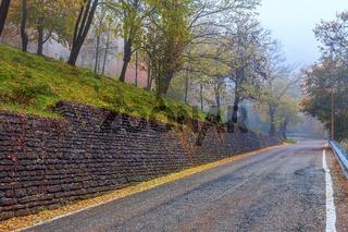 Narrow road at foggy morning.