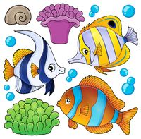 Coral reef fish theme collection 3 - picture illustration.