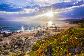 Coastal landscape on Corse, France, Europe.