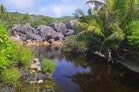 Brackwasserlagune am Traumstrand Grand Anse , Insel La Digue, Se