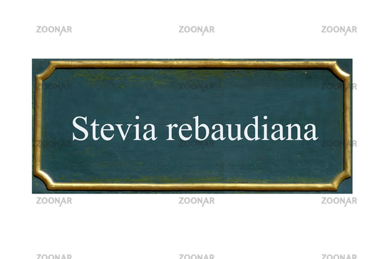 shield stevia rebaudiana