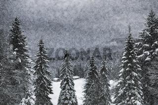 Wintermärchen HEMMERSUPPENALM I