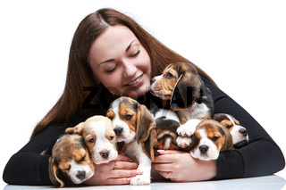 The woman and big group of a beagle puppies