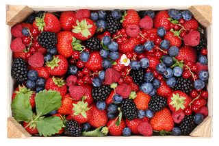 Beeren Früchte in Holzkiste mit Erdbeeren, Himbeeren und Kirschen