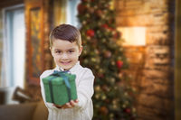 Mixed Race Boy with Christmas Tree Handing Gift Out Front