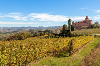 Autumnal vineyards and old castle in Italy.