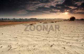 sunrise beams over sand dune