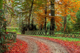 Autumnal park in Italy.
