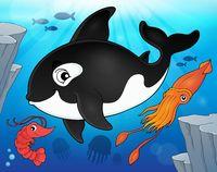 Ocean fauna topic image 9 - picture illustration.