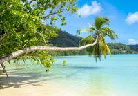 Beautiful tropical beach in Seychelles