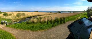 Landschaft am Dümmer See-133