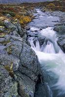 Stromschnellen der Driva / White water rapids of Driva river / Dovrefjell-Nationalpark  -  Soer Trondelag Norwegen