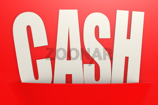 White cash word in red pocket, business concept