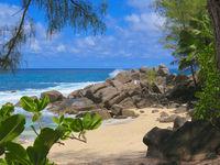 Idylle auf den Seychellen