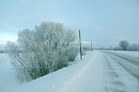 Road in winter a countryside