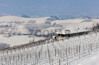 Hills and vineyard in winter.