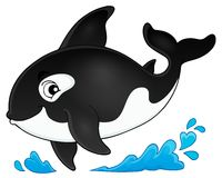 Orca theme image 1 - picture illustration.