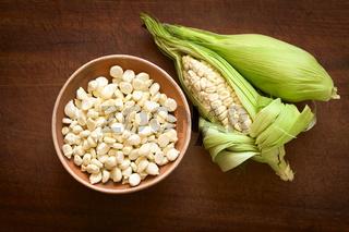 White Corn Called Choclo (Peruvian or Cuzco Corn)
