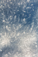 A landscape of ice needles