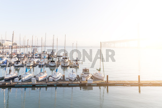 sail boats on tranquil water in the bay of san francisco