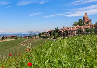 Serralunga d'Alba and green surroundings.